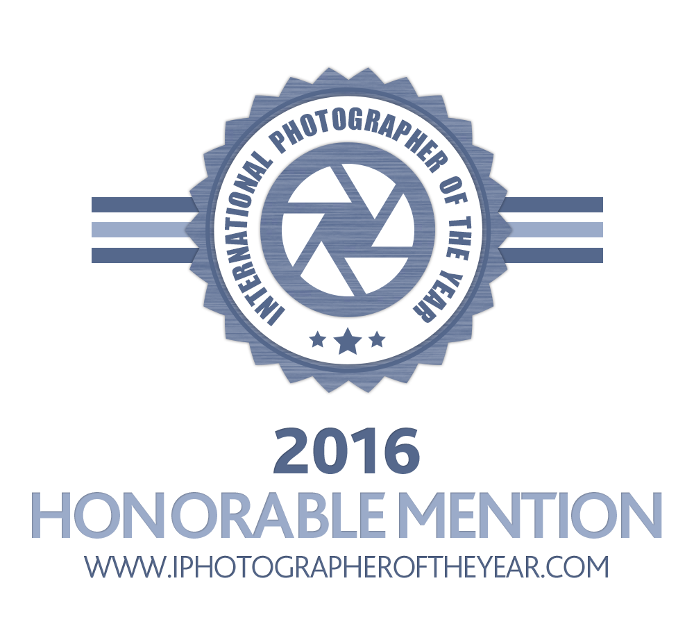 IPOTY 2016 Honorable mention