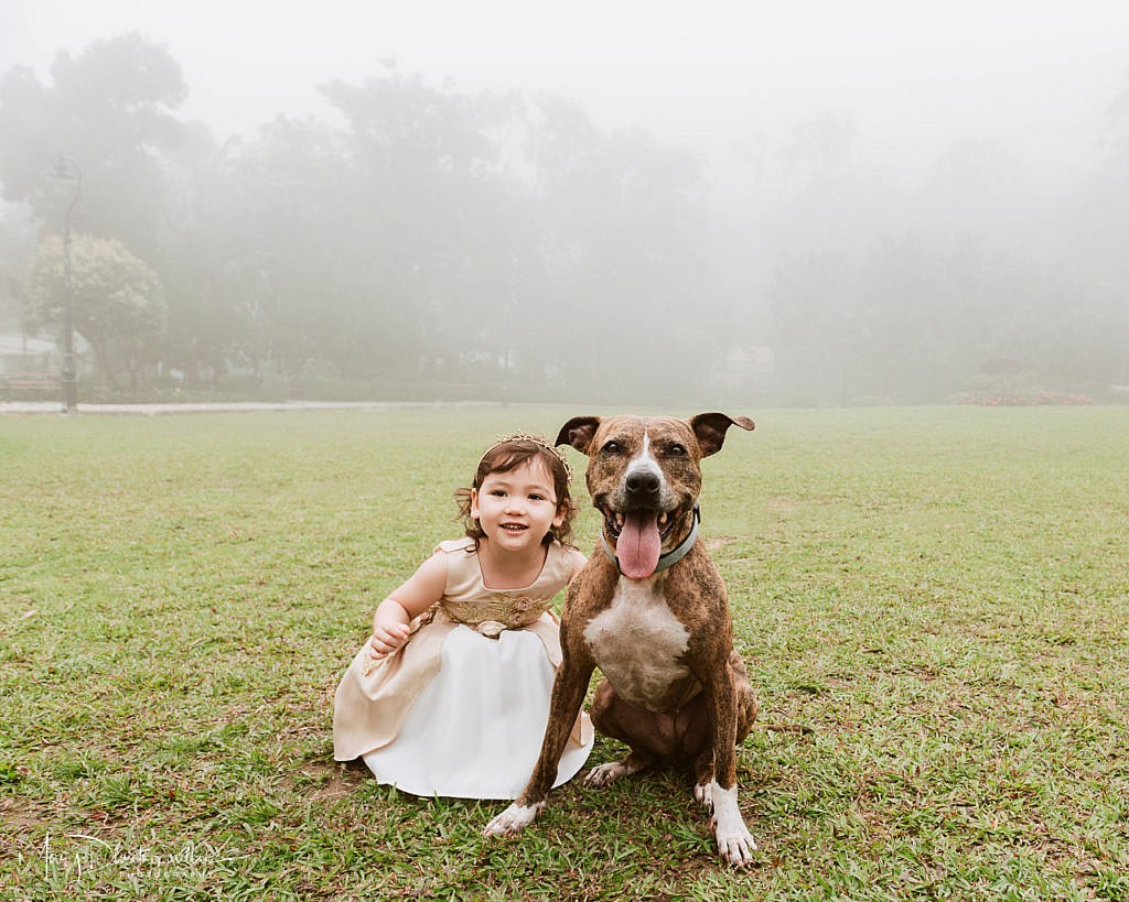 toddler, dog, fog